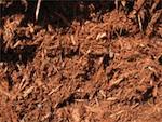 Premium Hemlock Mulch
