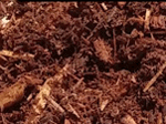 Aged Hemlock Mulch